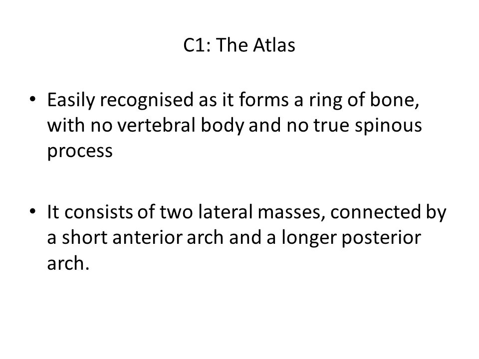 C1: The Atlas Easily recognised as it forms a ring of bone, with no vertebral body and no true spinous process.