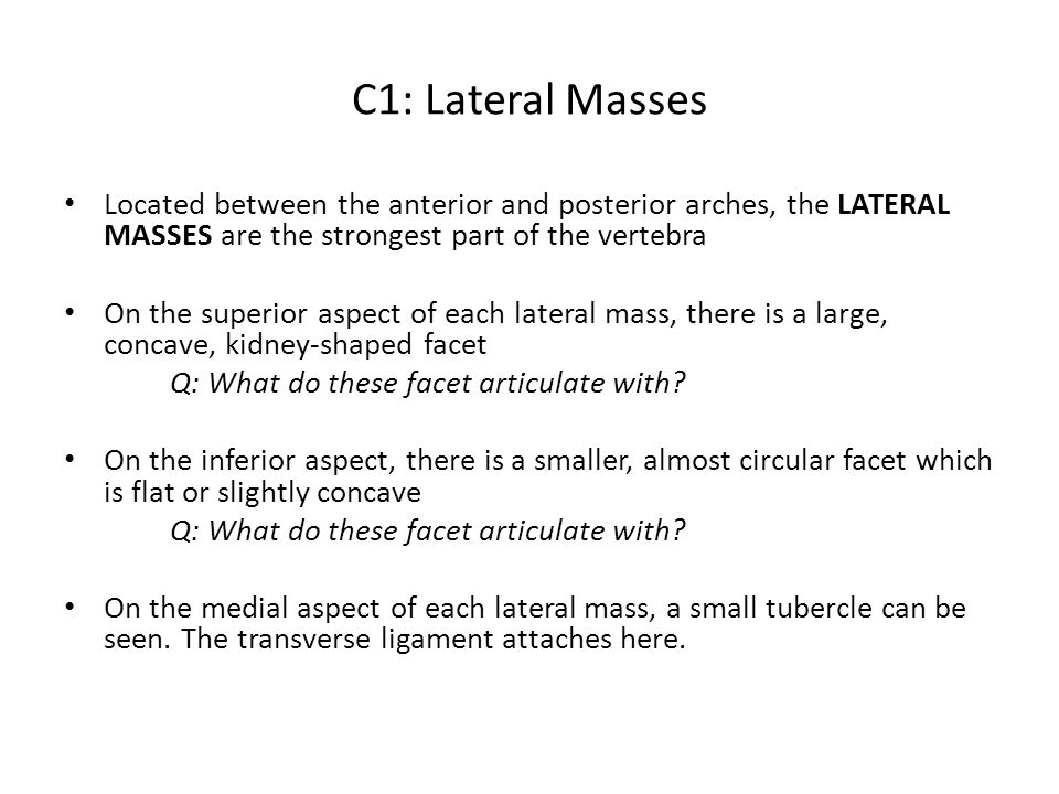 C1: Lateral Masses Located between the anterior and posterior arches, the LATERAL MASSES are the strongest part of the vertebra.