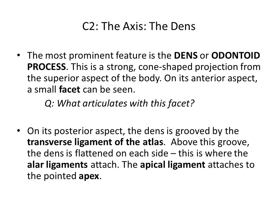 C2: The Axis: The Dens