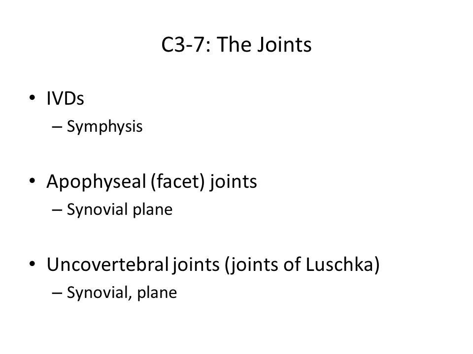 C3-7: The Joints IVDs Apophyseal (facet) joints