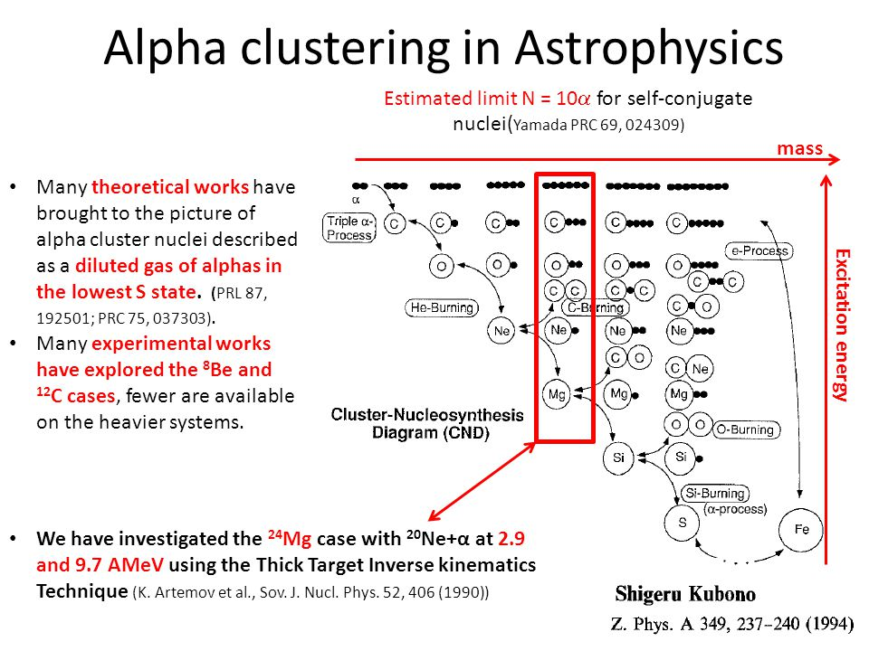 Alpha clustering in Astrophysics