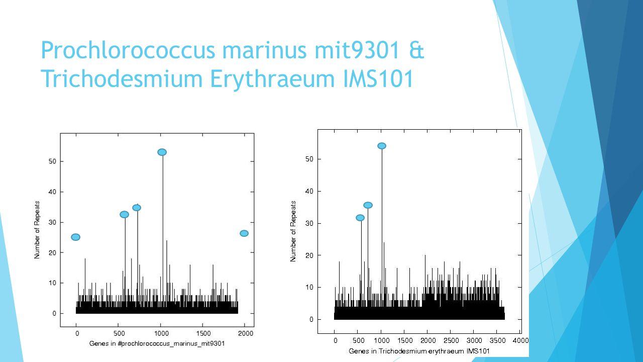 Prochlorococcus marinus mit9301 & Trichodesmium Erythraeum IMS101