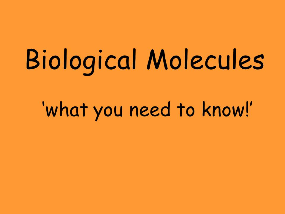 Biological Molecules 'what you need to know!'