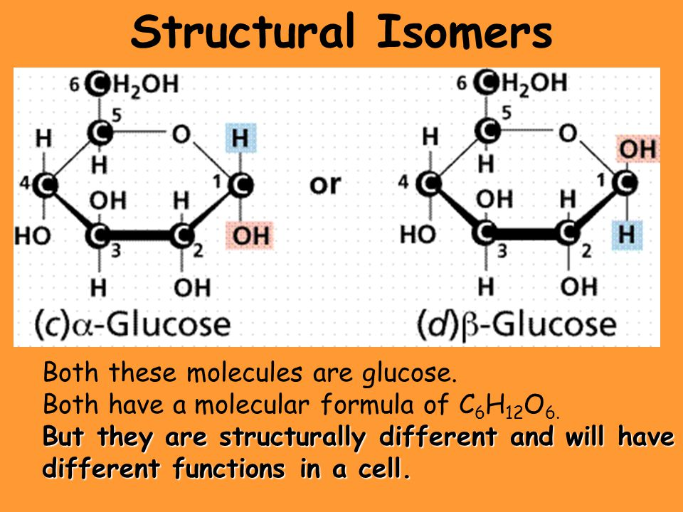 Structural Isomers Both these molecules are glucose.