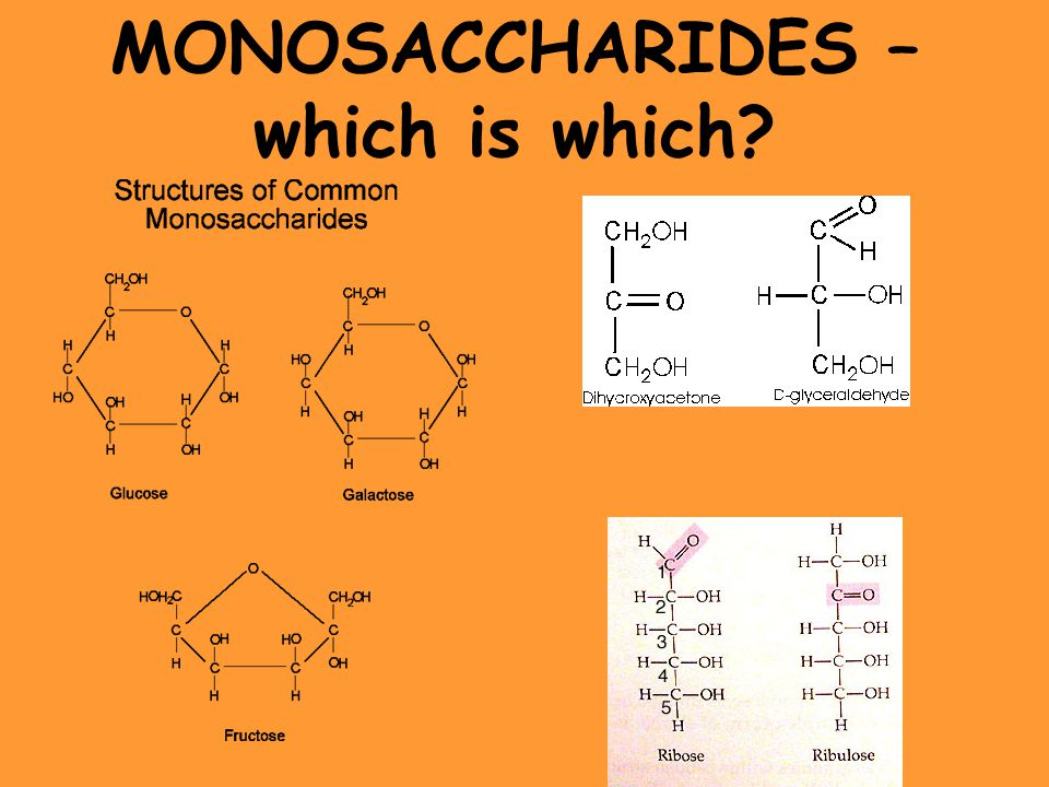 MONOSACCHARIDES – which is which