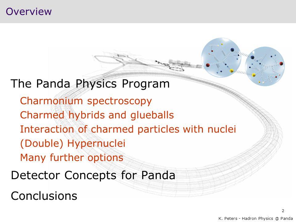 The Panda Physics Program
