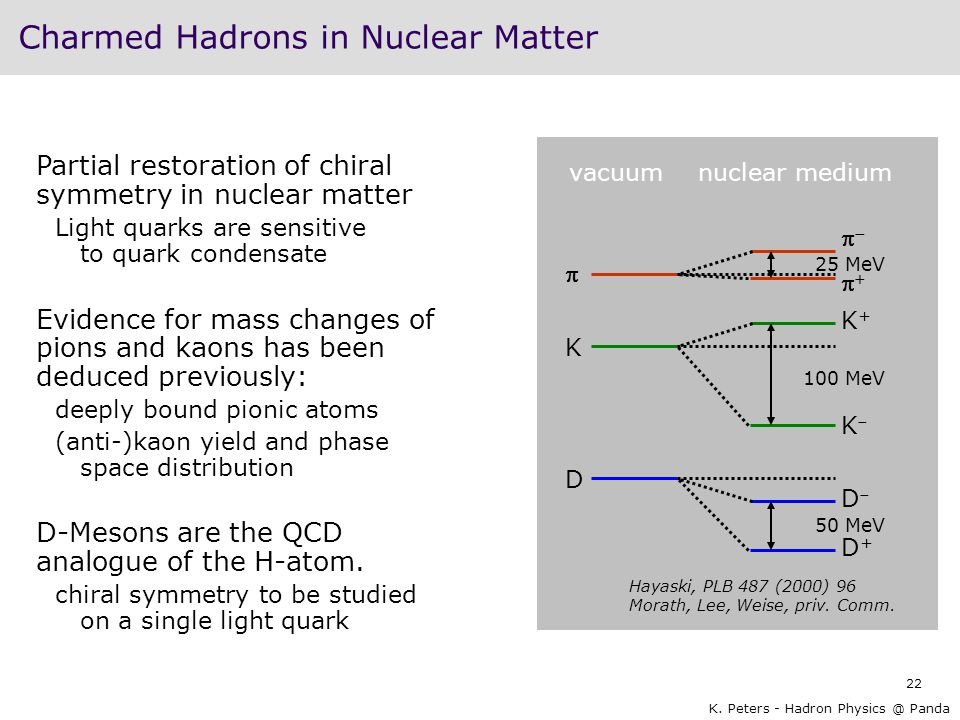 Charmed Hadrons in Nuclear Matter