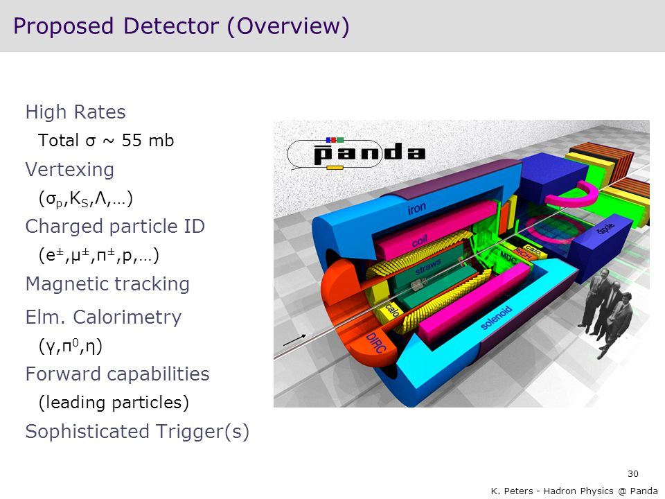 Proposed Detector (Overview)