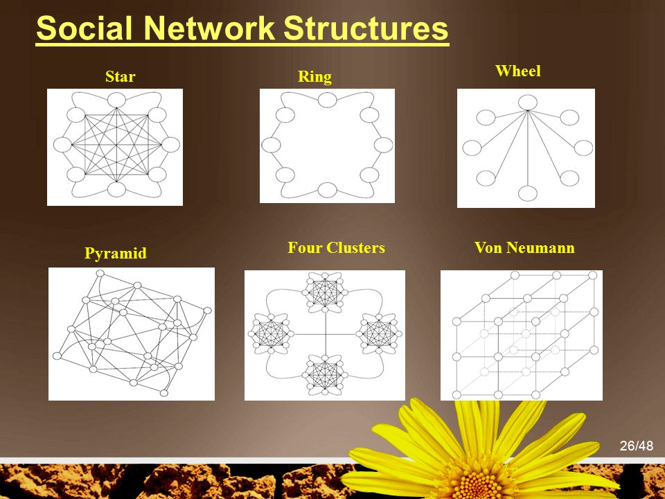 Social Network Structures