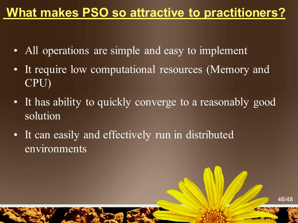 What makes PSO so attractive to practitioners
