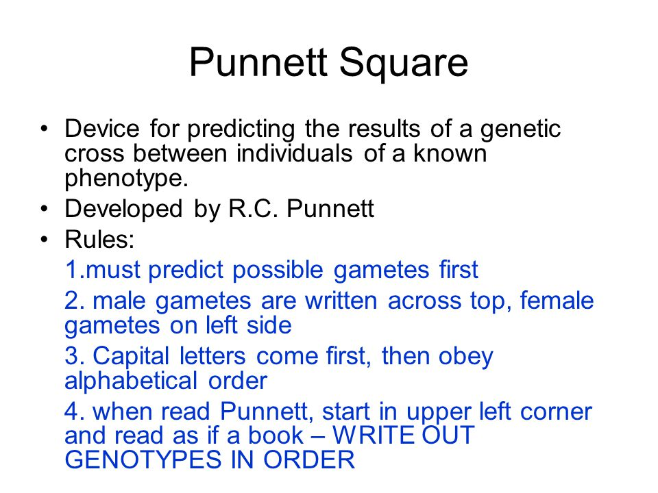 Punnett Square Device for predicting the results of a genetic cross between individuals of a known phenotype.