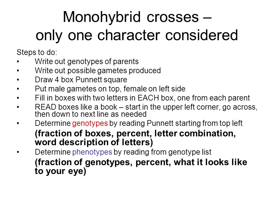 Monohybrid crosses – only one character considered