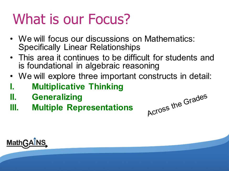 What is our Focus We will focus our discussions on Mathematics: Specifically Linear Relationships.