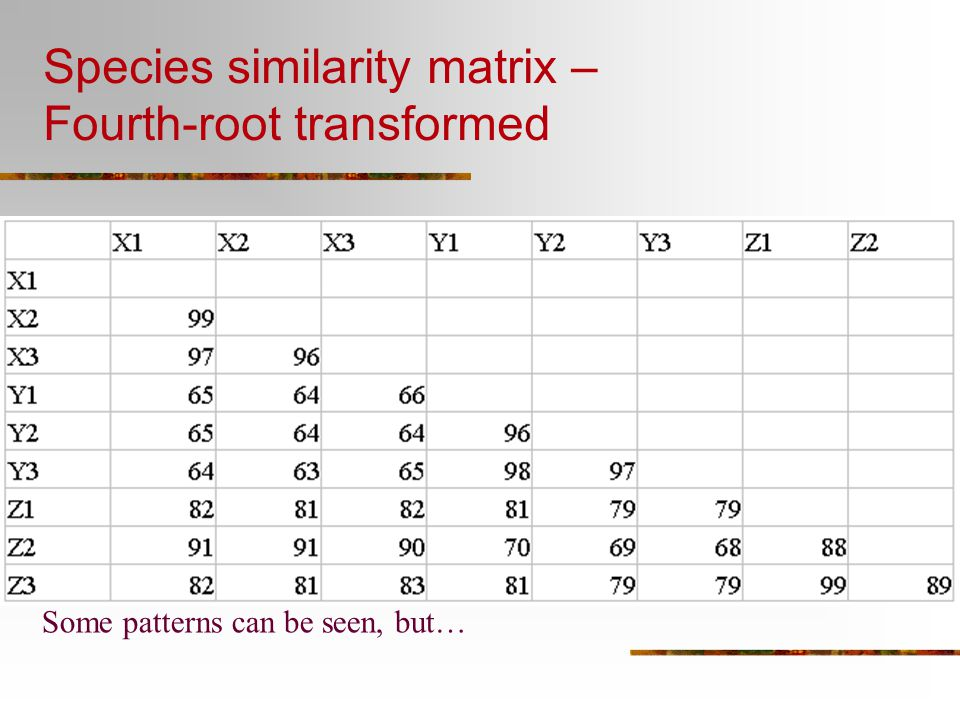 Species similarity matrix – Fourth-root transformed