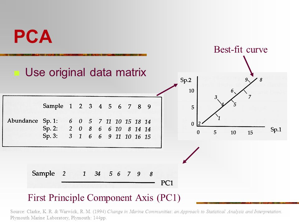 how to change the matrix to data in r