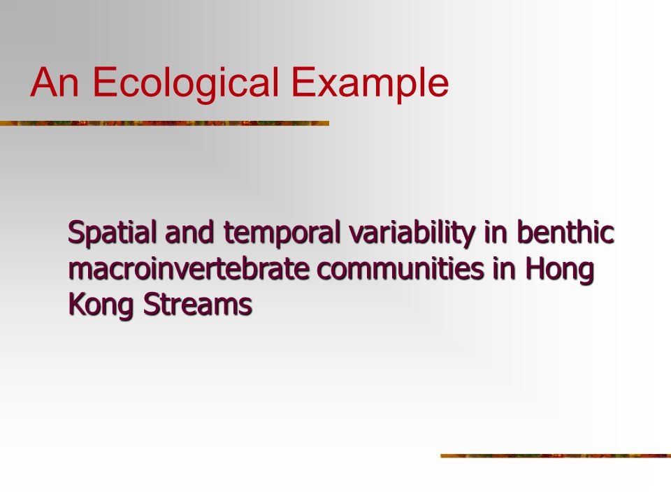 An Ecological Example Spatial and temporal variability in benthic