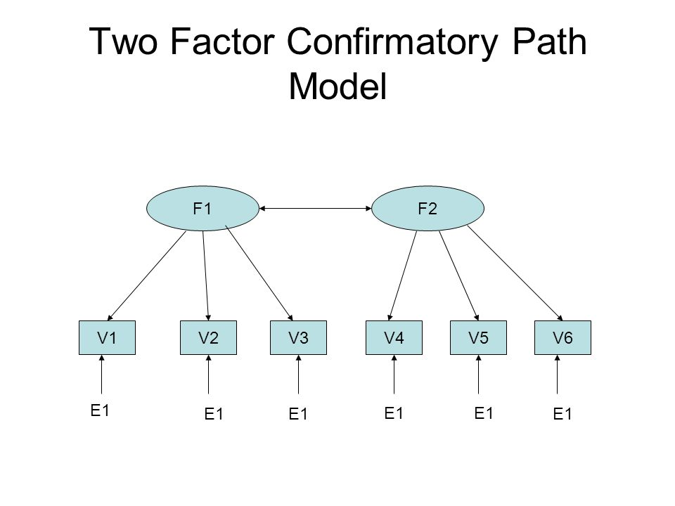 Two Factor Confirmatory Path Model