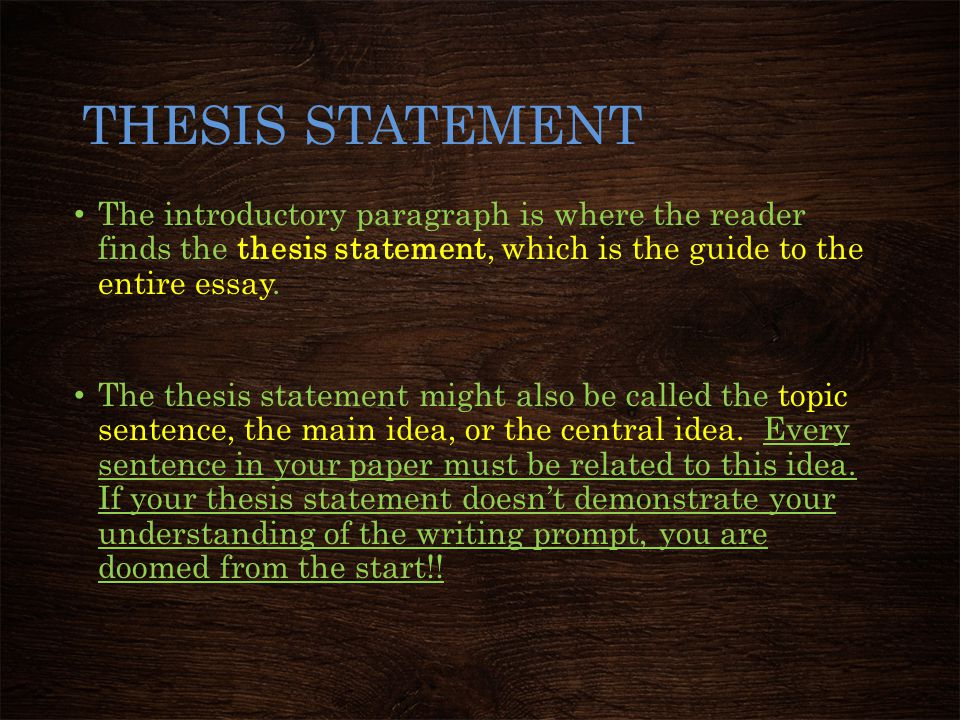 THESIS STATEMENT The introductory paragraph is where the reader finds the thesis statement, which is the guide to the entire essay.