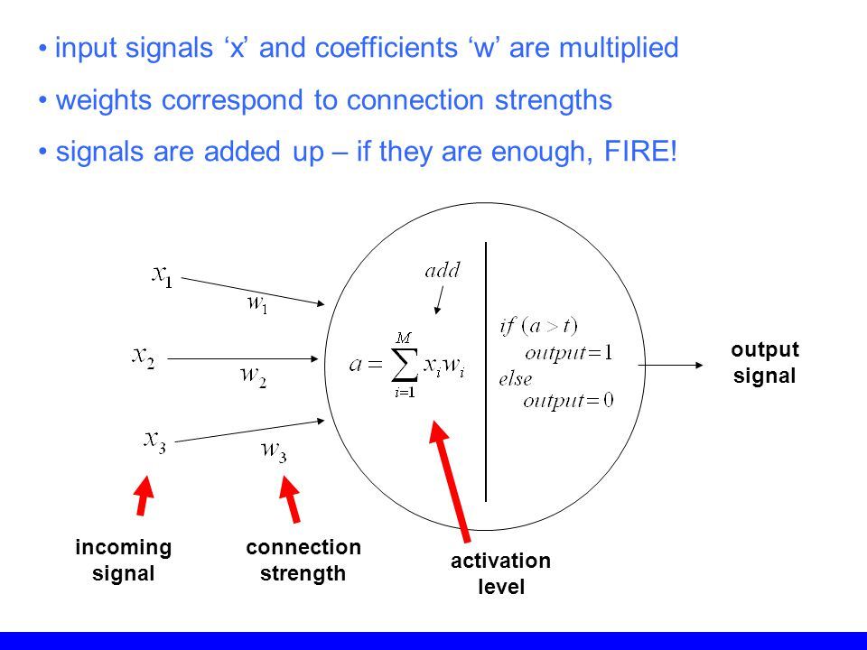 input signals 'x' and coefficients 'w' are multiplied