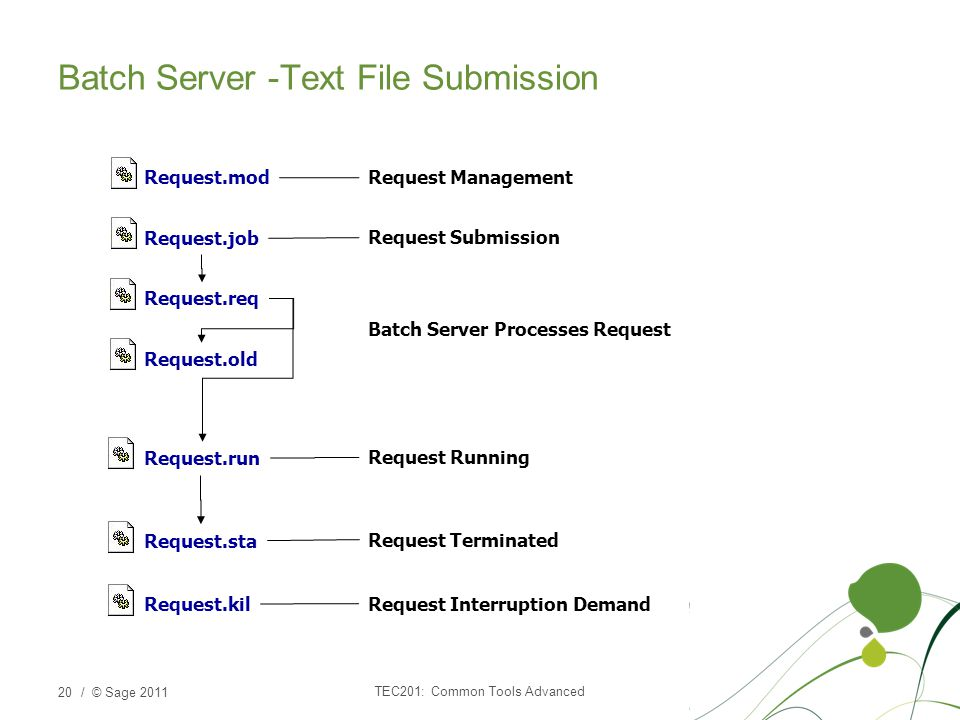 Batch Server -Text File Submission