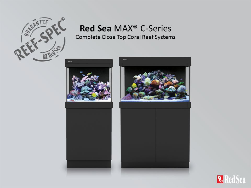 Complete Close Top Coral Reef Systems