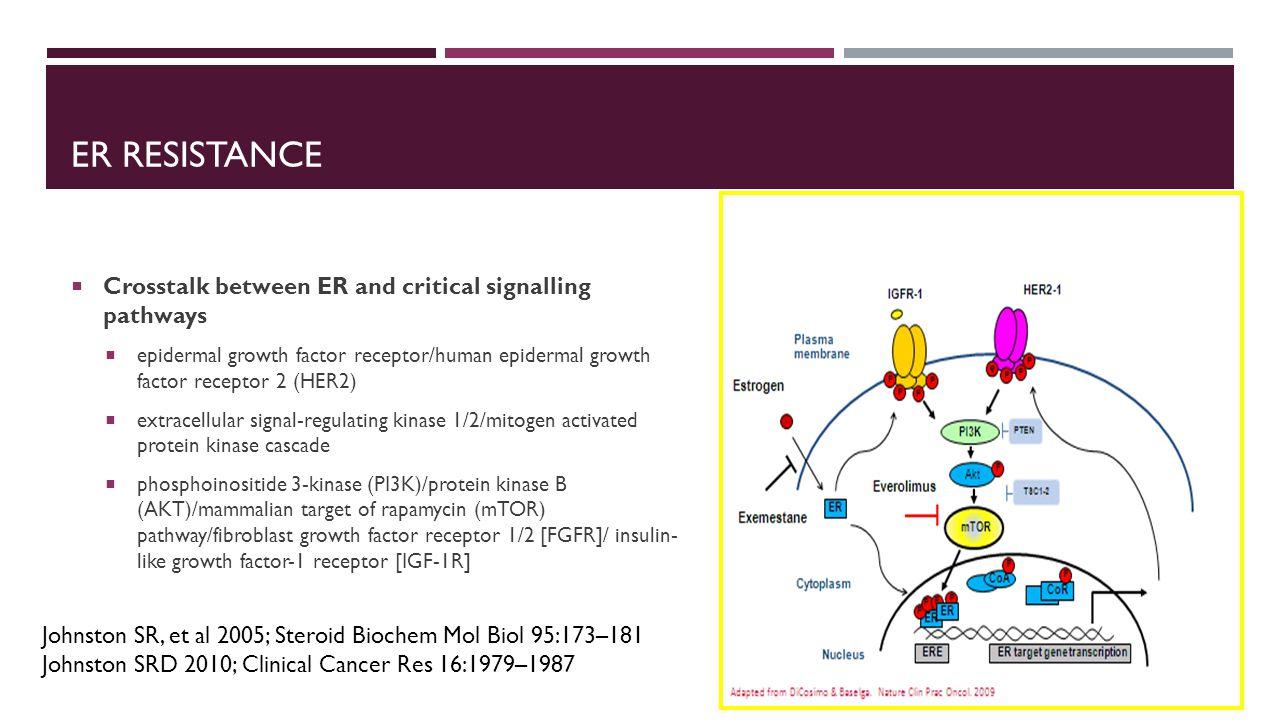 ER resistance Crosstalk between ER and critical signalling pathways
