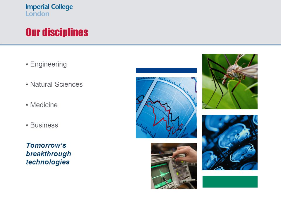 Our disciplines Engineering Natural Sciences Medicine Business