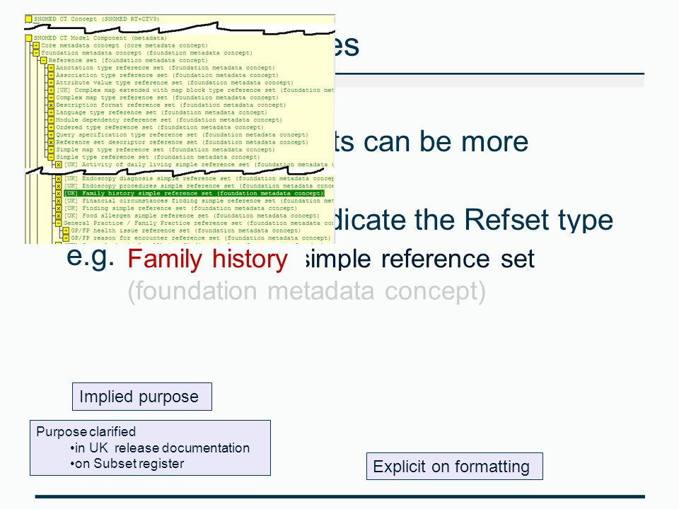 Reference Set names The labels for Refsets can be more verbose