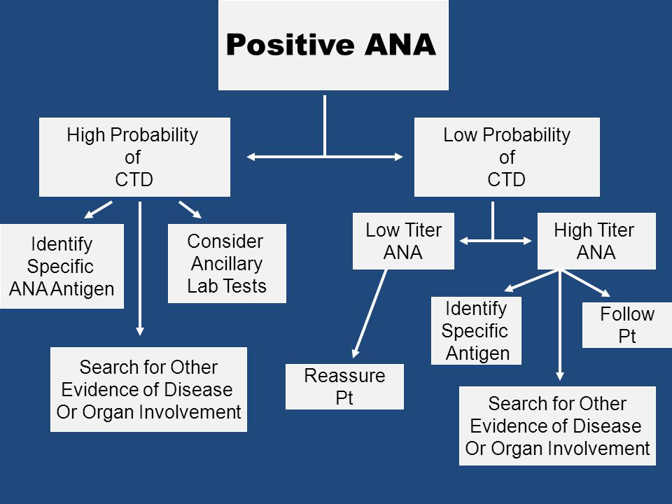 Positive ANA High Probability of CTD Low Probability of CTD Low Titer