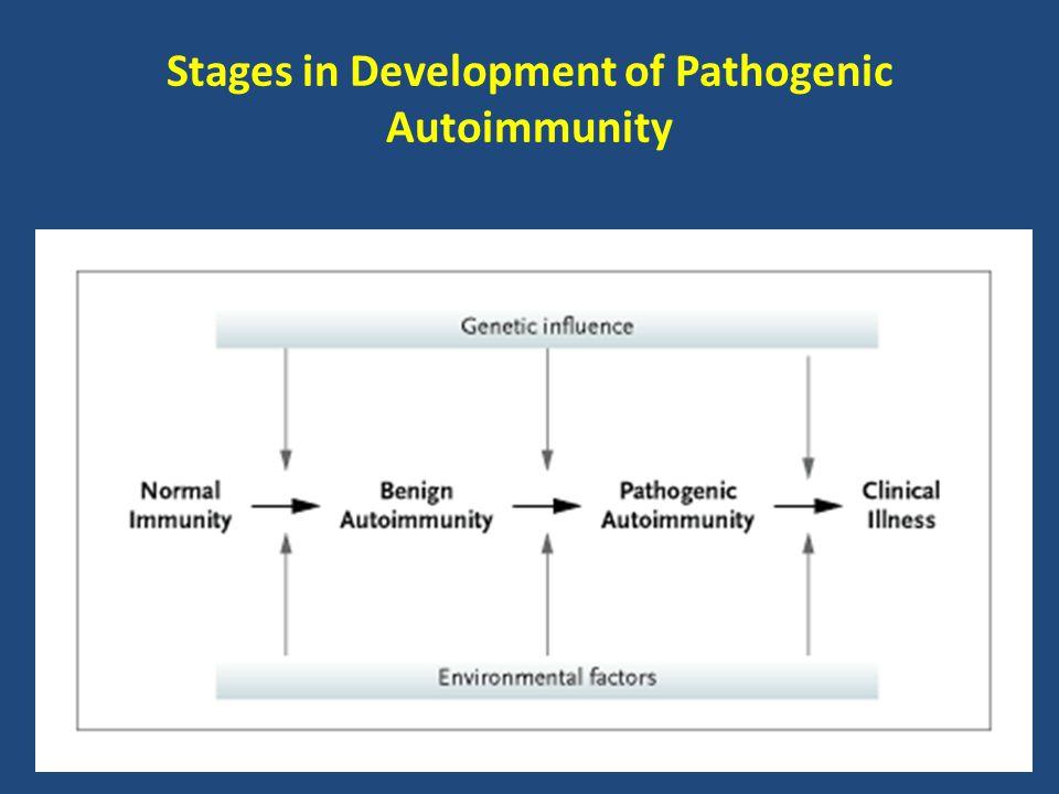 Stages in Development of Pathogenic Autoimmunity