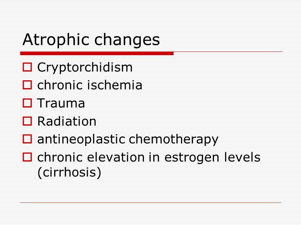 Atrophic changes Cryptorchidism chronic ischemia Trauma Radiation