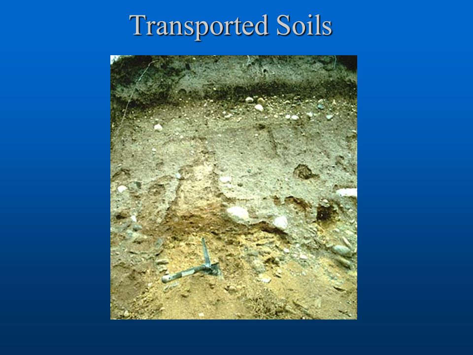 Transported Soils