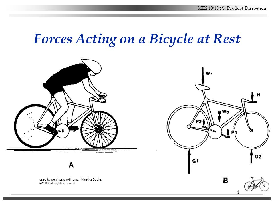Biomechanics Of Cycling Ppt Video Online Download