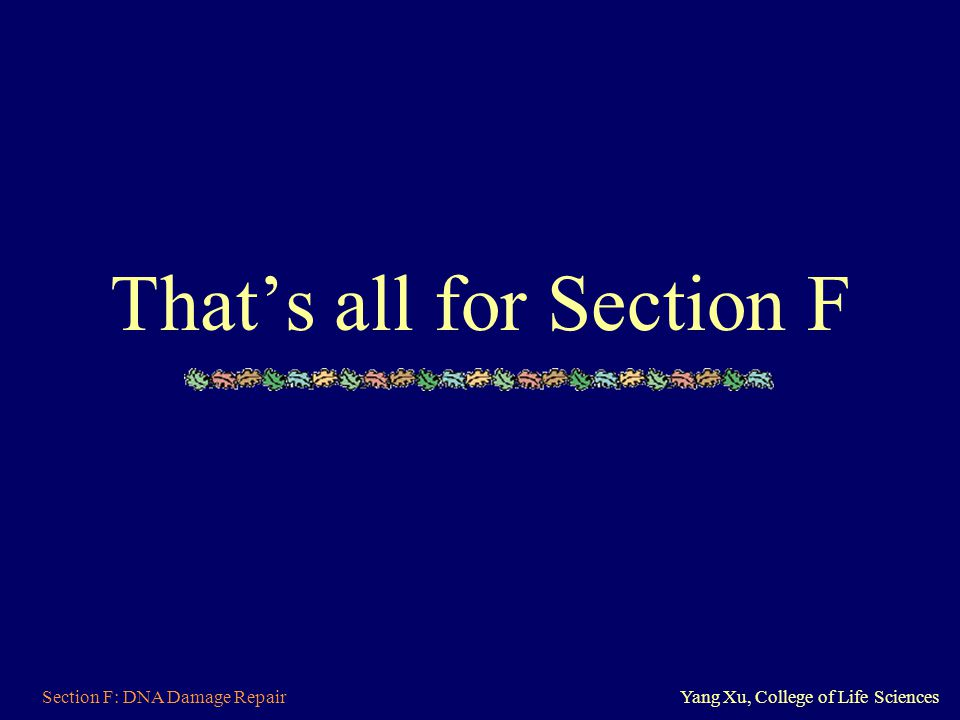 That's all for Section F