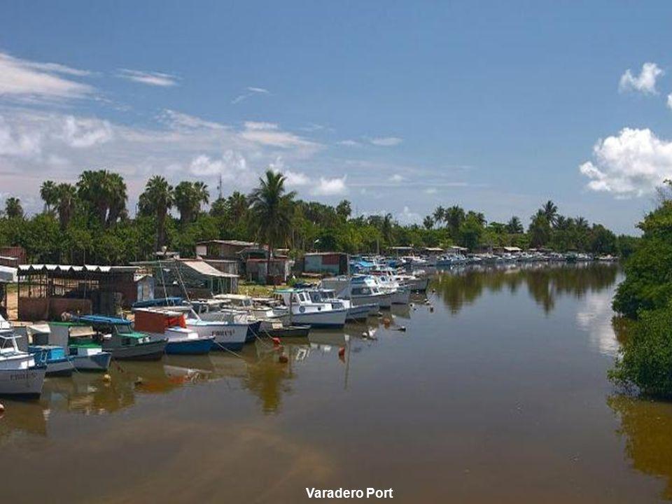 www.vitanoblepowerpoints.net Varadero Port