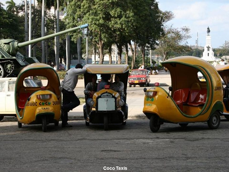 www.vitanoblepowerpoints.net Coco Taxis