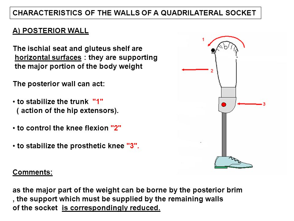 CHARACTERISTICS OF THE WALLS OF A QUADRILATERAL SOCKET
