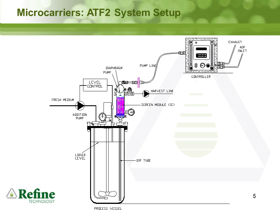 Microcarriers: ATF2 System Setup