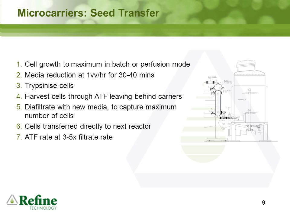 Microcarriers: Seed Transfer