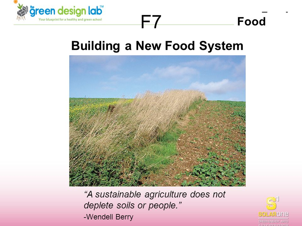 Building a New Food System