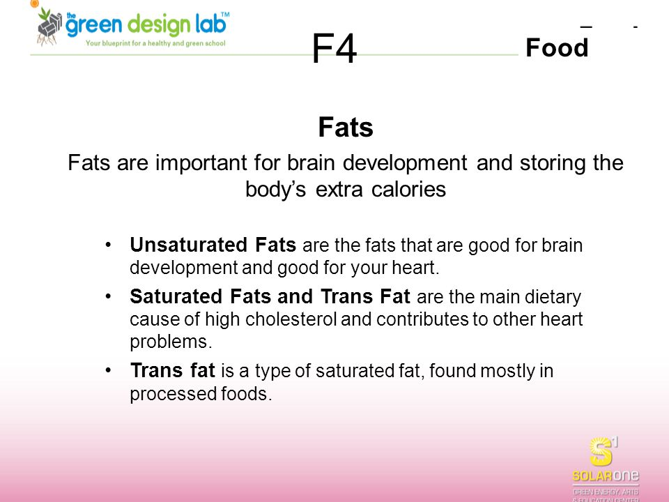 F4 Fats. Fats are important for brain development and storing the body's extra calories.