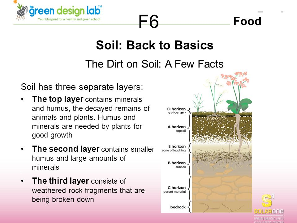 The Dirt on Soil: A Few Facts