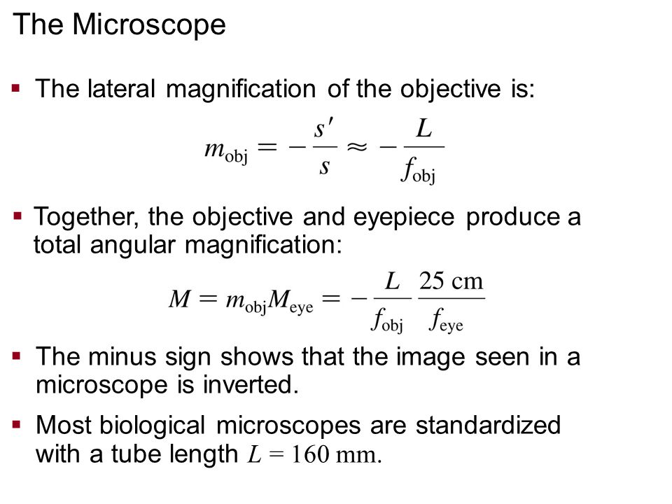 The Microscope The lateral magnification of the objective is: