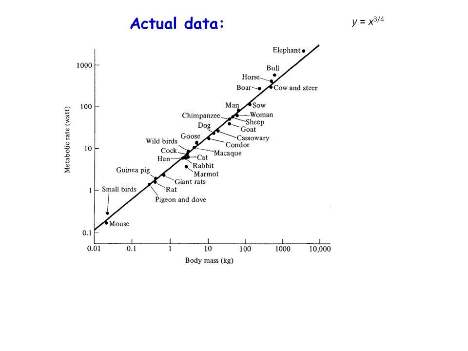 Actual data: y = x3/4