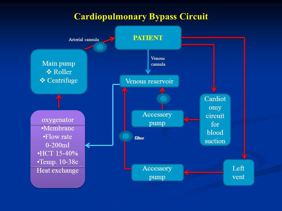 Cardiopulmonary Bypass Circuit