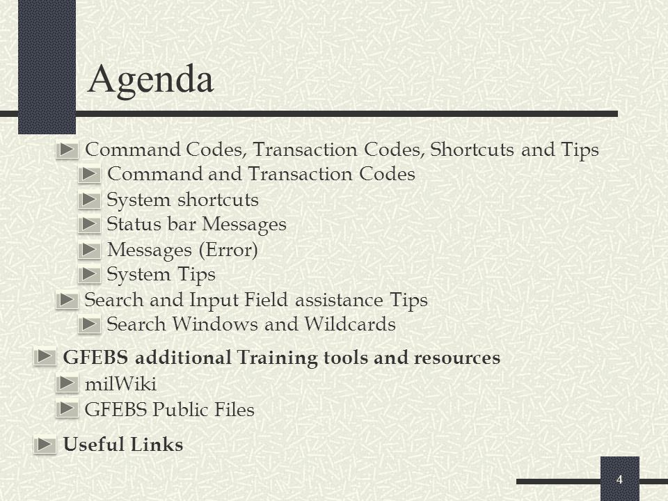 Agenda Command Codes, Transaction Codes, Shortcuts and Tips