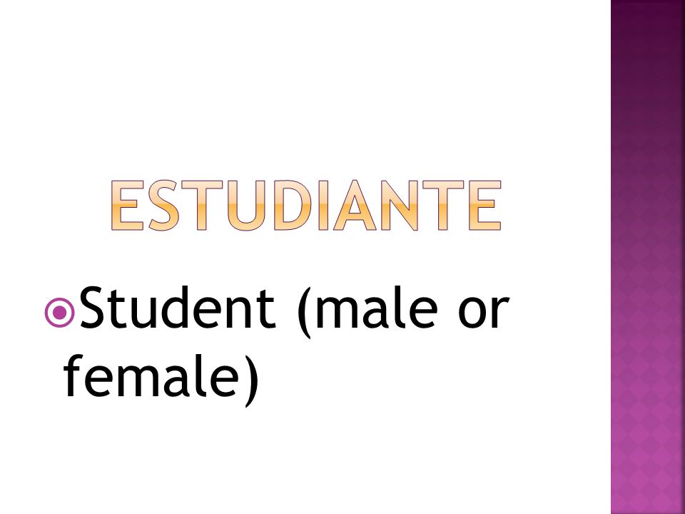 estudiante Student (male or female)