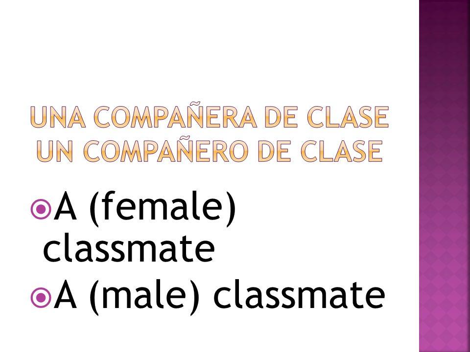 Una compañera de clase Un compañero de clase