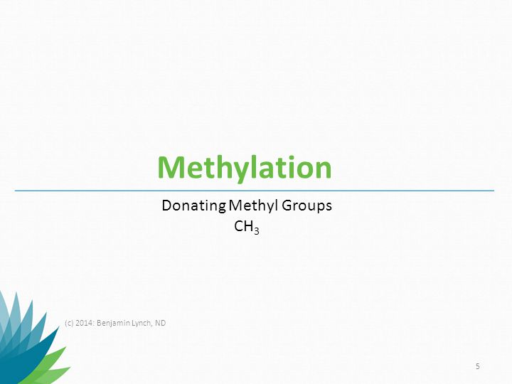Donating Methyl Groups
