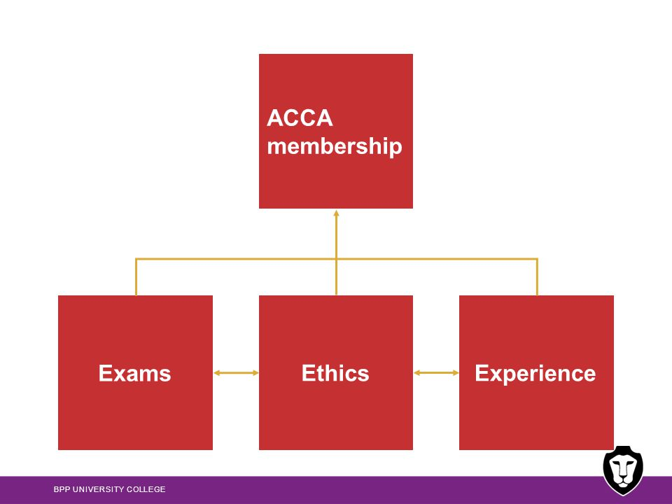 ACCA membership Exams Ethics Experience